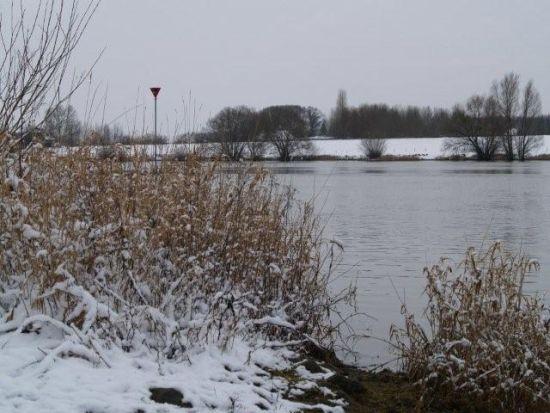"""P1104495 witvis  Met de feeder aan de """"Stromende"""" IJssel"""