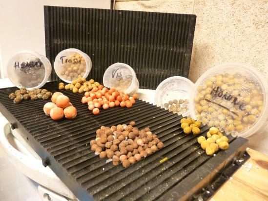 P1050867 witvis featured  Zelf boilies maken