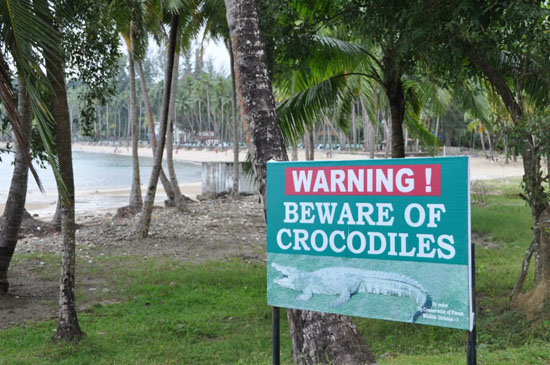 krokodil Andaman Islands