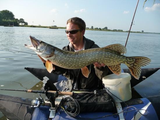 Stevige riviersnoek tijdens het snoekbaarzen. Totaal niet te sturen, echt verbazingwekkend hoeveel kracht deze vissen hebben!