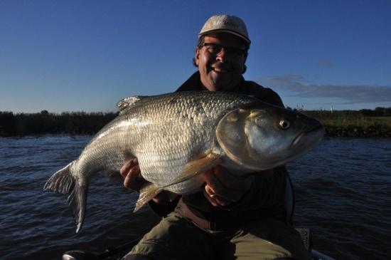 In de zomer vervolgens op de roofblei met een legendarische zwaar en lang PR, wat een vis!!