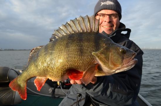 En mijn PR baars! Samen met de roofblei de mooiste vissen van het jaar!