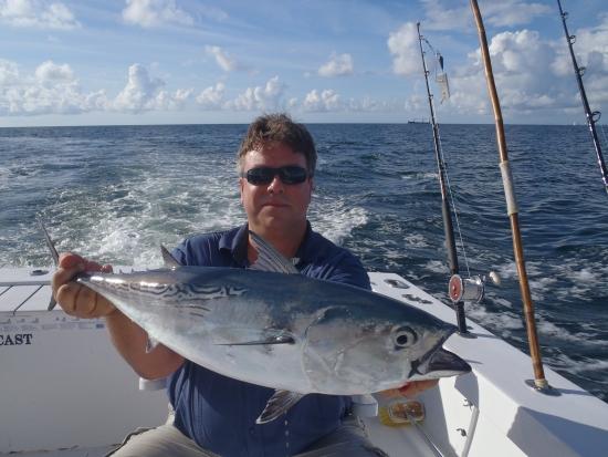 Een dag vissen vanuit Miami levert 3 soorten tonijn op, waaronder deze skipjack tuna