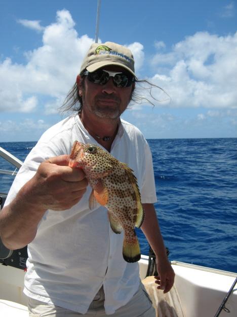 Ook deze grouper soort is prachtig gekleurd