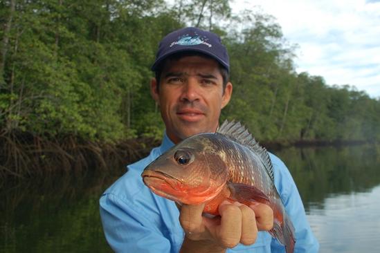 Pablo Chaves met een mangrove snapper, op de popper