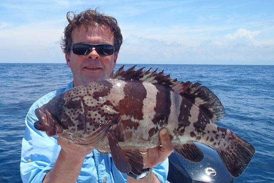 Prachtige grouper