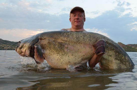 big fish 3