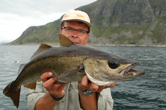 Target fish pollak: binnen!