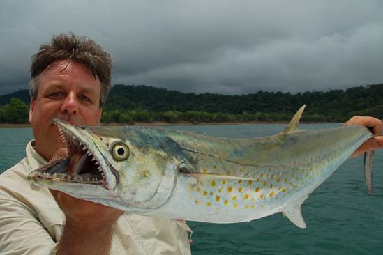 De laatste dag in Costa Rica knallen de Sierra Mackerells op de poppers
