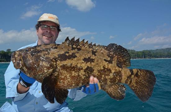 En grouper op de popper. Oh, wat wilde hij graag terug naar zijn holletje in de diepte. Maar dat wist ik te voorkomen :-).