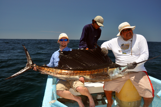 Totaal onverwachts vang ik mijn grootste vis ooit. Wat een schoonheden, die zeilvissen!