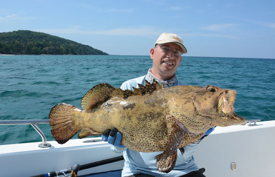 grouper3