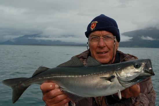 Opa Henk met 1 van de vele koolvissen