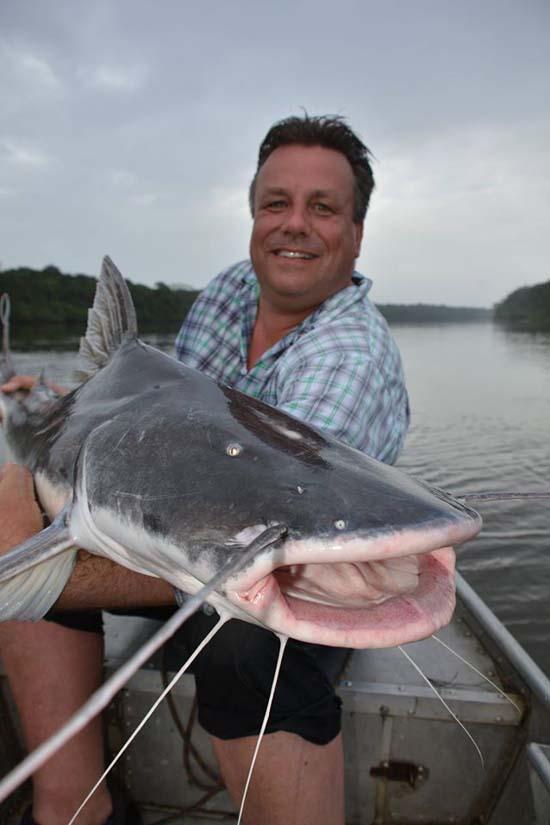 """De zelfde vis van voren – omdat ze zo'n mooie """"bakkes"""" hebben"""