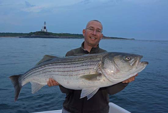 Striped Bass Montauk
