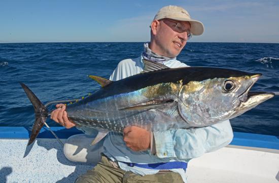 blauwvin tonijn middelandse zee