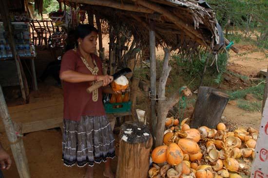 kokosnoten drank Sri Lanka