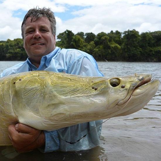 Het absolute doel van de visvakantie in het binnen land van Guyana was de iconische arapaima. Zowel HJ als ik mochten een 2 meter plus exemplaar op onze naam schrijven.