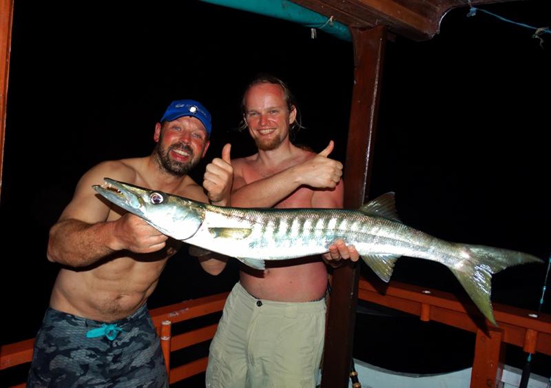 Blackfin Barracuda op een groot stuk aas