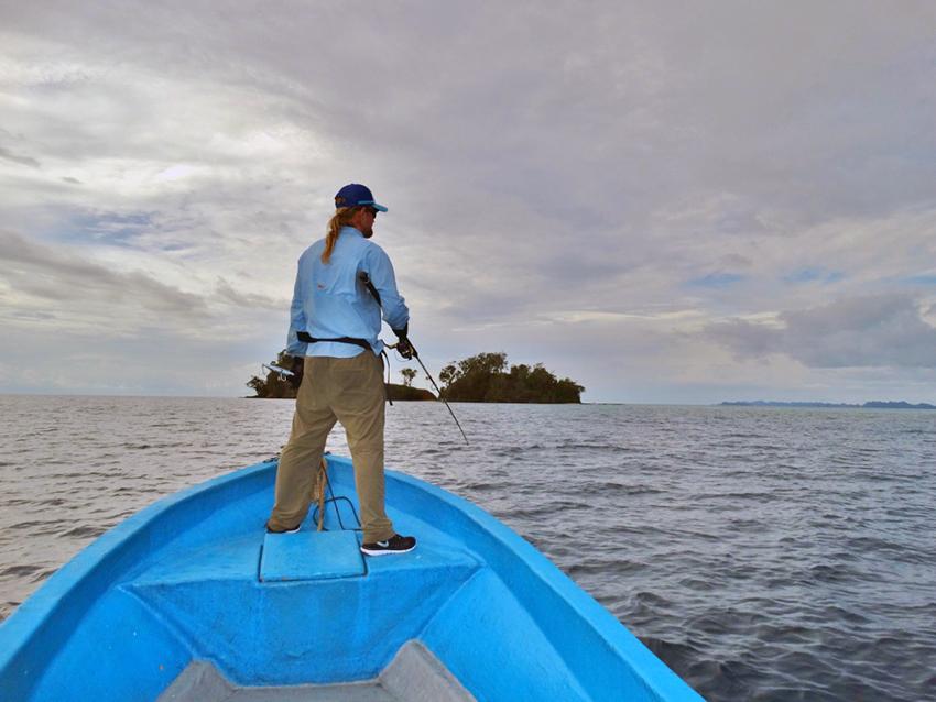 Op zoek naar groupers
