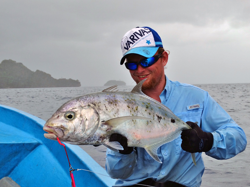 Yellowspot Trevally,