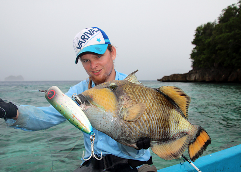 Triggerfish, territoriale hufters...