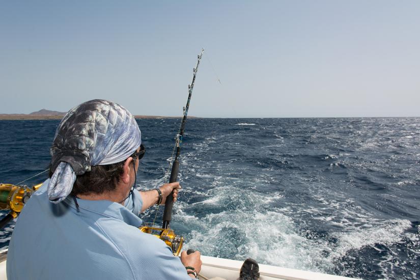 Marlijn vissen Maio