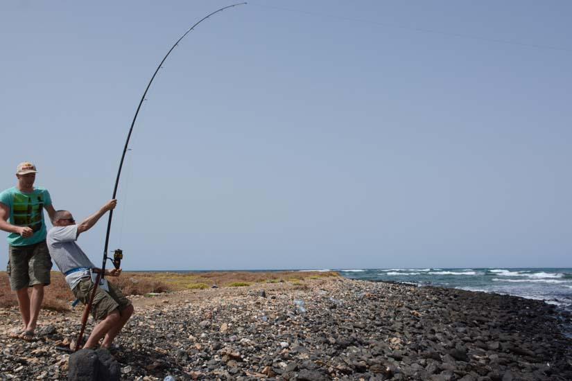 dril haai kant Maio