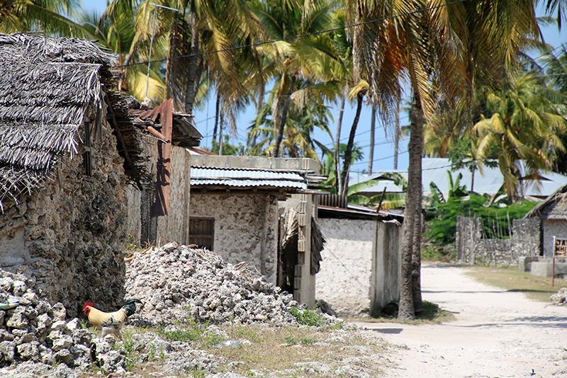 Jambiani, het dorp achter de lodge, het echte Afrika