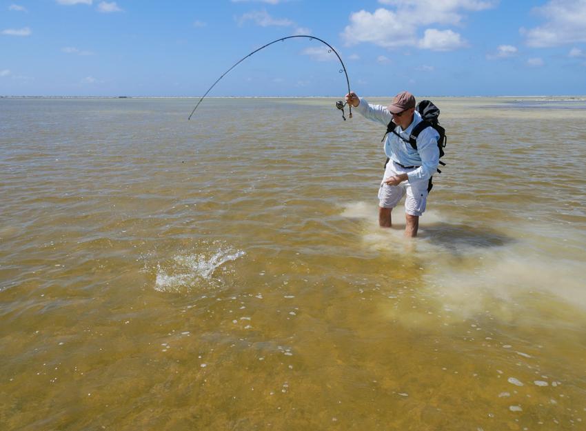 dril Bonefish Bonaire