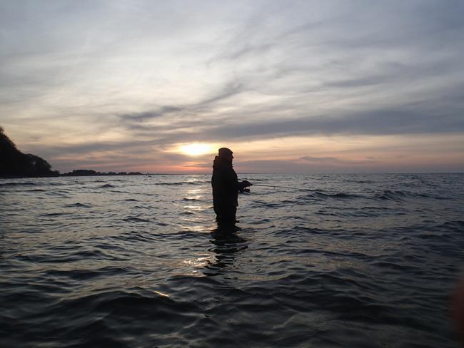 avondvissen zeeforel Mon
