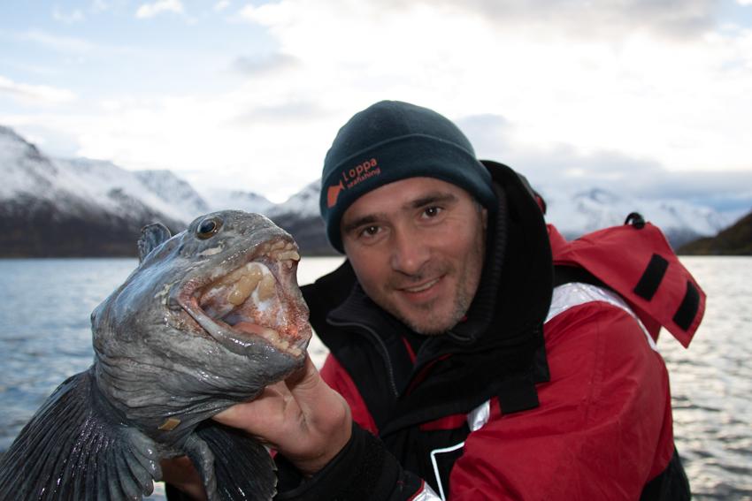 zeewolf Loppa noorwegen