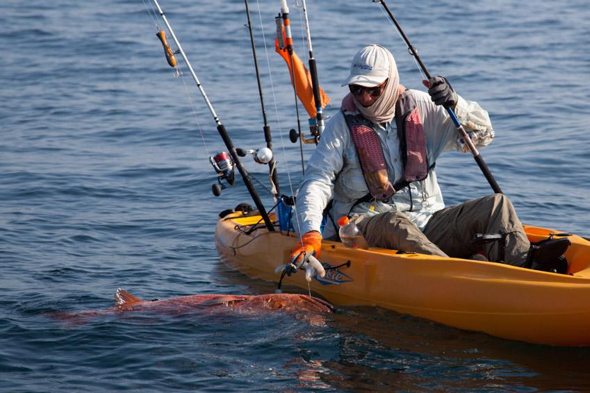Cubera Snapper Kayak Panama