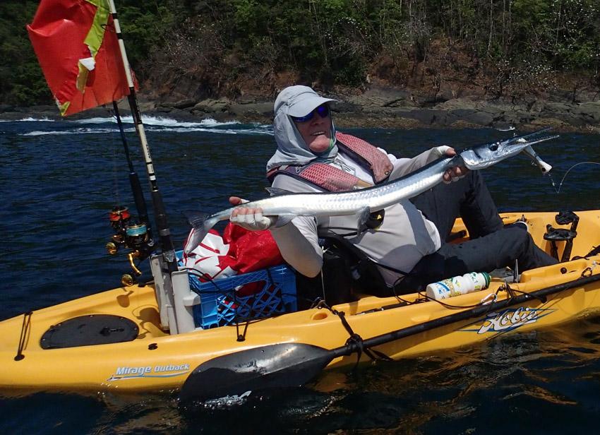 zeilvis panama kayak